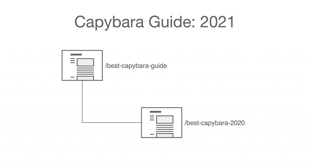 Image: Capybara Guide 2021 with a non-date-specific URL