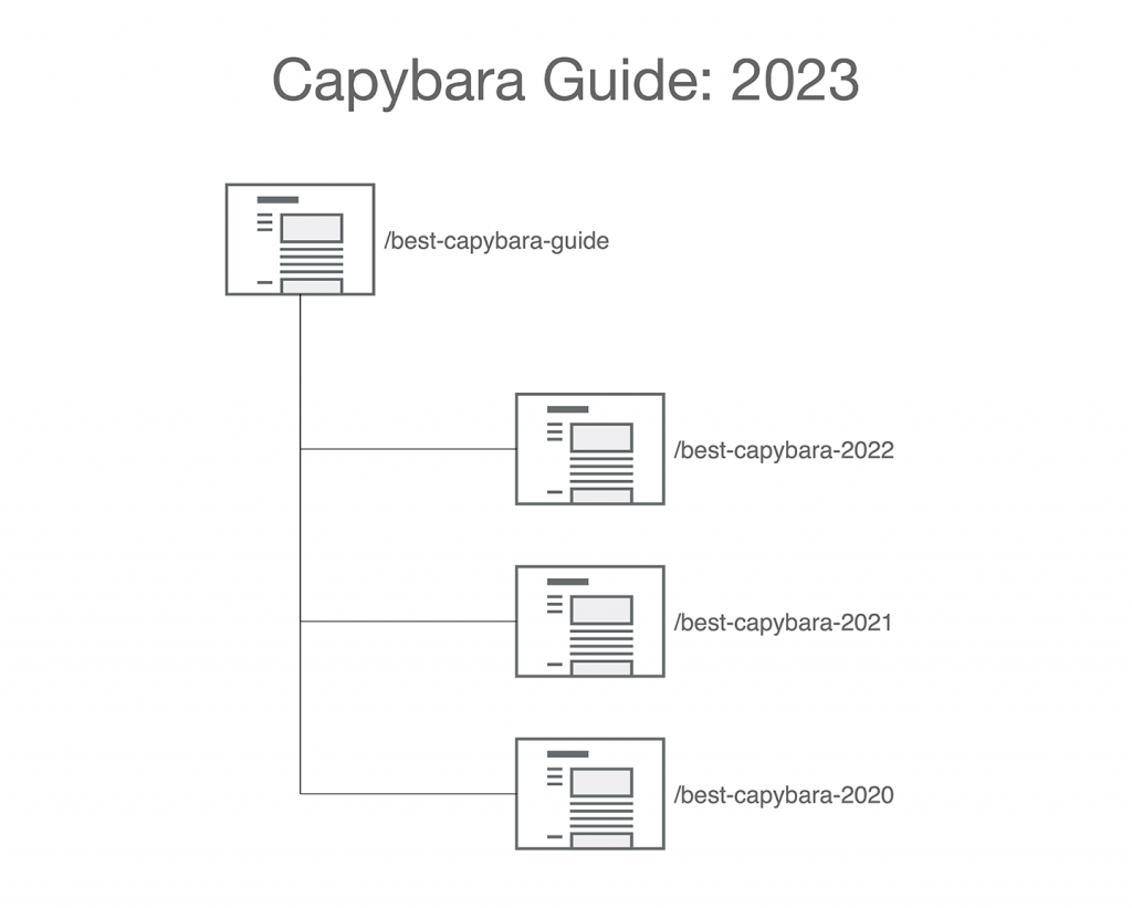 Image: Capybara Guide 2021 with a non-date-specific URL. 2020 is archived to a date-specific URL.